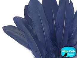 moonlight feathers moonlight feather goose feathers navy blue goose