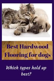 best hardwood flooring for dogs estate and house beautiful