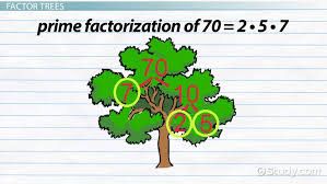 what is prime factorization definition u0026 examples video