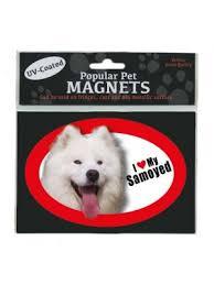 american eskimo dog nz samoyed magnet om055 jpg