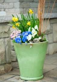 Bathtub Planter Creative Garden Planters Thriftyfun
