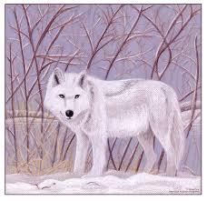 Animals In The Winter Winter Wolf By Iduck On Deviantart