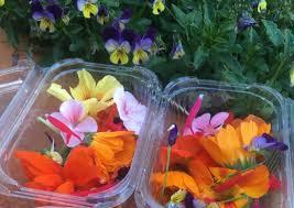 organic edible flowers organic edible flowers punnet 15 20g local farm fresh organics