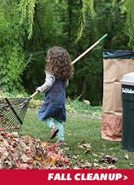 Fall Cleanup Landscaping by Fall Cleanup Landscaping Lawn Care U0026 Products True Value