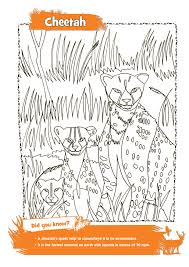 amazing animal colouring pages families online
