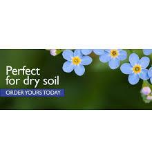 native uk plants wildflowers for sale buy uk wildflower plug plants