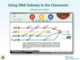 using dna subway in the classroom red line lesson sketch ppt