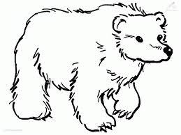 panda bear template coloring