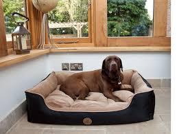 Washable Dog Beds 5 Best Washable Dog Bed 2017 2018 Reviews X Large Stuff