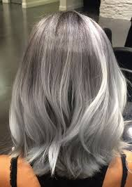 silver hair silver hair obsession mane interest