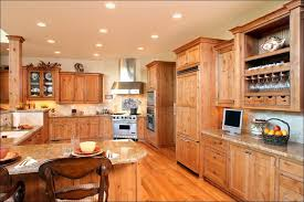 Kitchen Cabinets Financing 30 Pantry Cabinet Home Design Ideas And Pictures