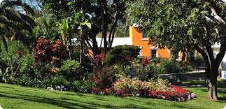 Bermuda Botanical Gardens Guide To Parks Gardens Nature Reserves In Bermuda Islands