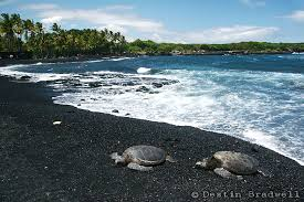 black sand beach hawaii black sand beach