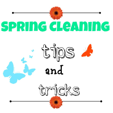 Spring Cleaning Tips Spring Cleaning Tips And Tricks Debbiedoo U0027s