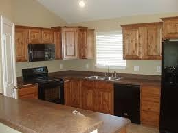 Black Appliances Kitchen Design - 141 best kitchens with black appliances images on pinterest