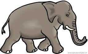 side view elephant clipart clipartxtras