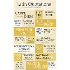 tattoo quotes about life in latin i want a tattoo in latin i love the one that says there s more to