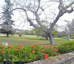 Bermuda Botanical Gardens Bermuda Out Of Town Attractions