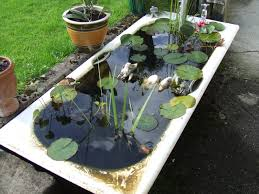 container water garden with goldfish home outdoor decoration