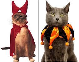 Halloween Costumes Cats Mockery U0027s Halloween Grab Bag Pet Costumes