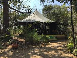 twice baked a story of food and travel pench jungle camp