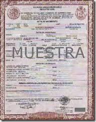 formato de acta de nacimiento en blanco gratis ensayos distrito federal actas en linea de nacimiento matrimonio y defuncion
