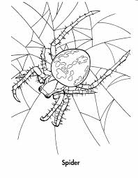 Free Halloween Printables Coloring Pages by Spiders Spider Coloring Sheet Coloring Pages Free Printable Spider