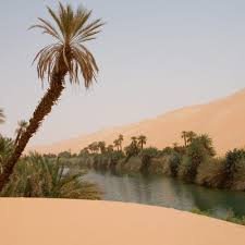 Snow In Sahara Types Of Climate In The Sahara Desert Usa Today
