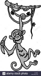 cute baby monkey hanging on tree stock vector art u0026 illustration