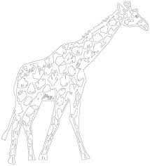 giraffe outline sketch coloring page