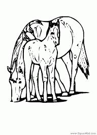 coloriage cheval et son poulain à imprimer dans les coloriages