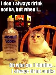 Drinking Problem Meme - lolcats vodka lol at funny cat memes funny cat pictures with