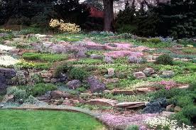 Rock Gardens On Slopes Rock Garden Flowers Flower Rock Garden On Slope Small Rock Garden