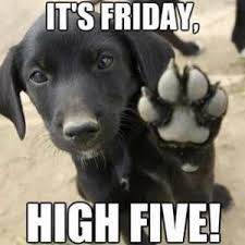 Happy Friday Meme - lincoln village ministry happy friday doggie print lincoln