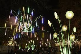 crockett fantasy of lights the best things to do out and about in january around the uk stylist