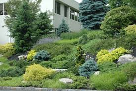 Rock Gardens On Slopes Maher Greenwald Slopes And Rock Gardens Gallery