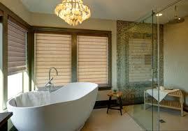 shower mesmerizing bathtub walk through insert tub shower