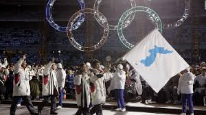 How Many Stars Are On The Flag North And South Korea To March Together At Olympics Cnn