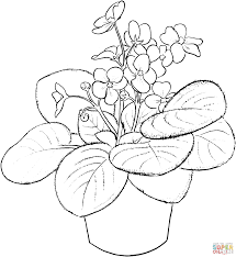 violets coloring page free printable coloring pages