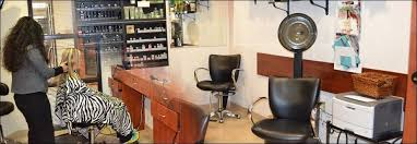imagique salon suites plano tx hair and spa suite