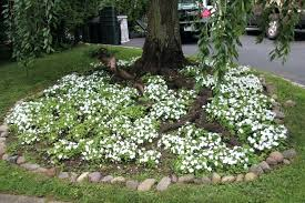 landscaping ideas around trees landscape design ideas com