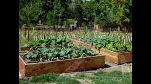 31 marvellous vegetable garden design ideas australia u2013 izvipi com