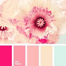 Pink Color Bedroom Design - the 25 best pink color combination ideas on pinterest pink