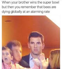 Eli Manning Memes - eli manning s thinking bees are dying at an alarming rate know