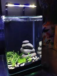 Category Pico Fish Tank
