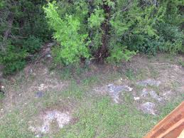 help need quote on landscape of the sloped backyard houses