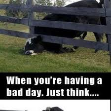 Having A Bad Day Meme - when you re having a bad day by luddesvard meme center