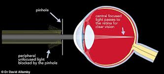 What Structure Of The Eye Focuses Light On The Retina How To See Without Your Glasses Daily Mail Online