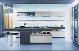 Modern Kitchen Design Idea Contemporary Kitchens Designs For Worthy Modern Kitchen Design