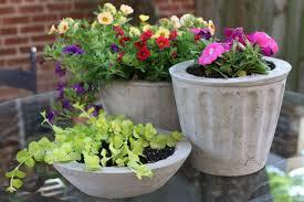 cement plant pots tutorial diy concrete planters diy concrete and